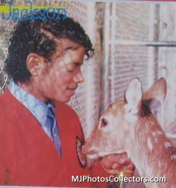 MJ with pets