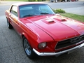 Martin's Mustang