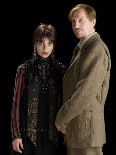 tonks & Lupin in HBP [HQ]