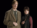 Tonks & Lupin in HBP [HQ] - tonks photo