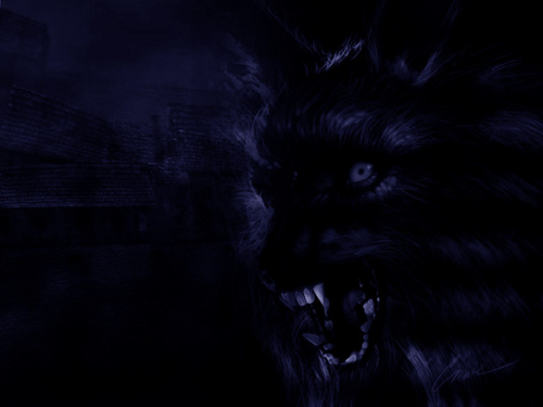 manusia serigala wallpaper titled Werewolf