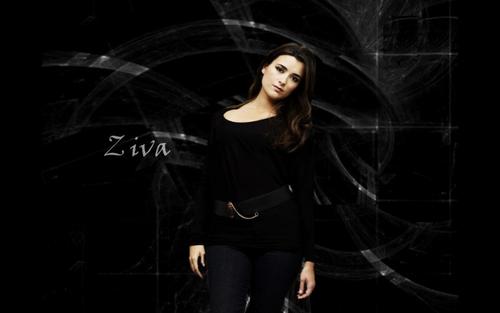 Ziva David (Cote De Pablo) Widescreen