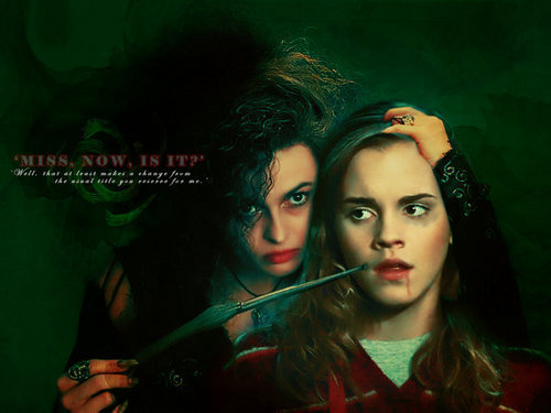 bellatrix tourtures hermione