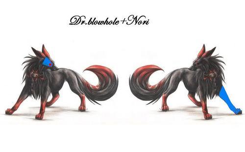 blowhole and nori as demon wolfs