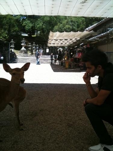 maika and a goat