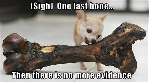 (Sigh) One last bone… Then there is no thêm evidence