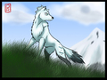 Anime wolves - anime-wolves photo