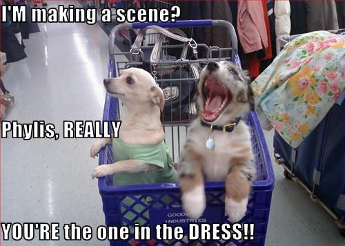 I'M making a scene? Phylis, REALLY YOU'RE the one in the DRESS!!