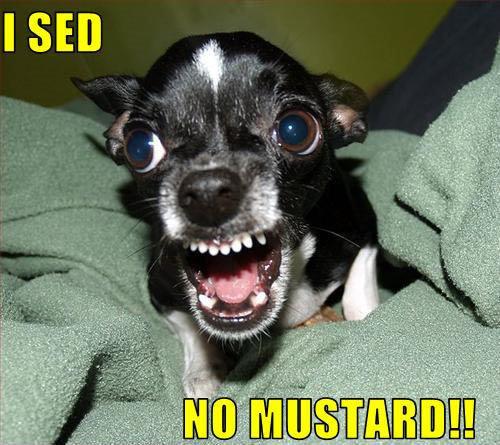 I SED NO MUSTARD!!
