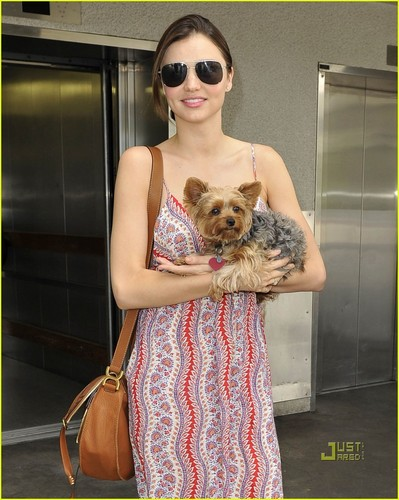 Miranda Kerr wallpaper entitled Miranda Kerr: Frankie Fun Travels