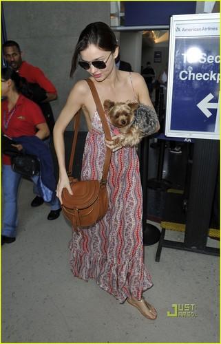 Miranda Kerr: Frankie Fun Travels