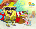 Summer - spongebob-squarepants wallpaper