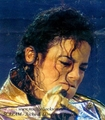 "The ""Money Shots"" - michael-jackson photo"