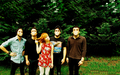 Wallpaper: Paramore (BNE promo photo)