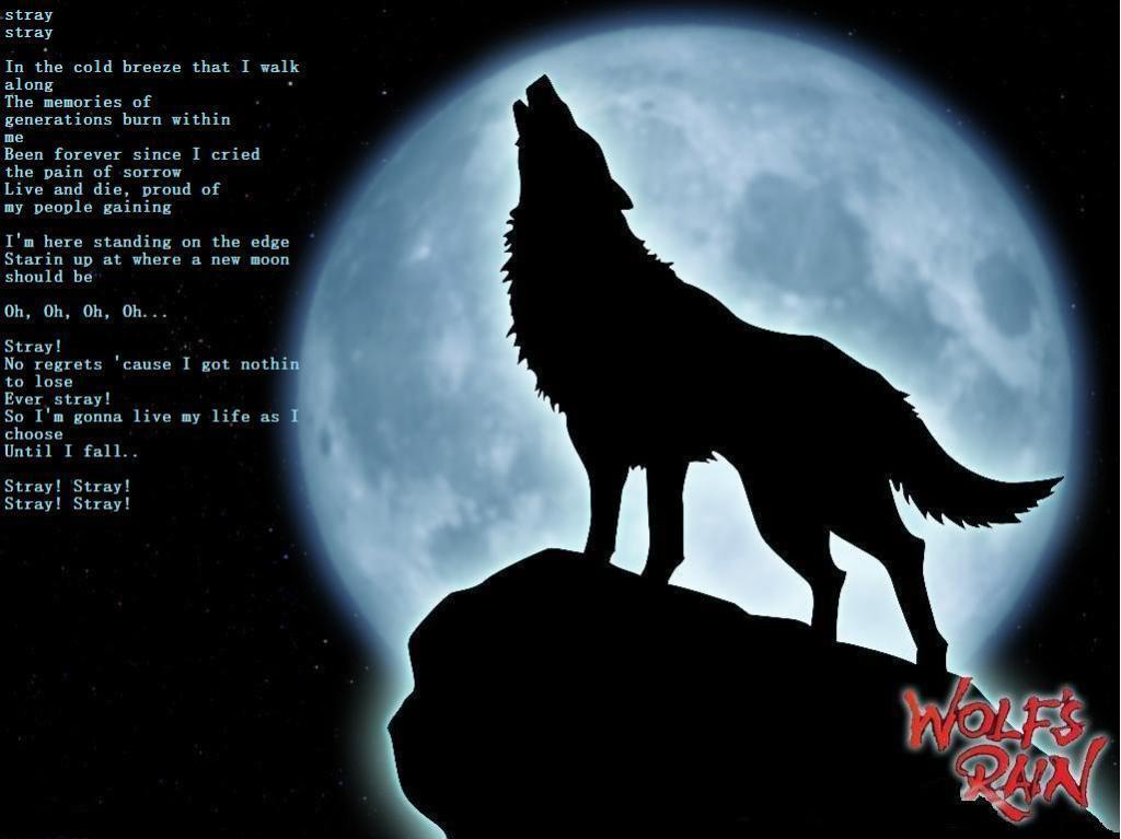 wolf rain lyrics: