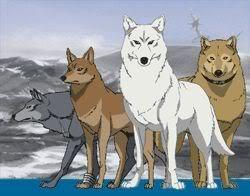 Wolf's Rain!