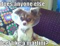 does anyone else feel like a martini?