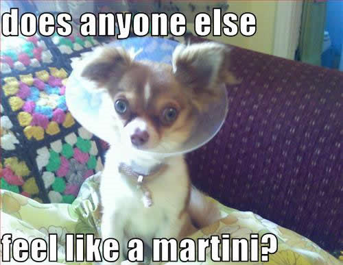 does anyone else feel like a martini?