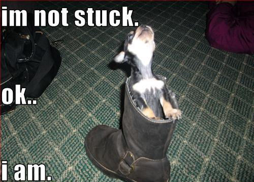im not stuck !!