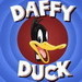 Daffy Duck - daffy-duck icon