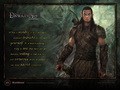 Dalish Elf - dragon-age-origins wallpaper