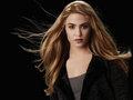 Eclipse Promotional: Bella, Esme, Rosalie, Carlisle, Emmett