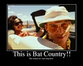 This is Bat Country! - fear-and-loathing-in-las-vegas fan art