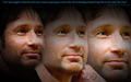 HoDD Header (June 2010) - david-duchovny fan art