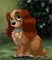 Lady - disney-animal-heroines fan art