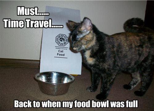Lol......Cats !!