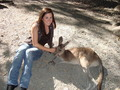 Marine With Kangaroo