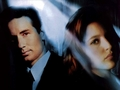 Mulder and Scully wallpapers - mulder-and-scully wallpaper