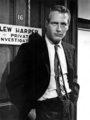 Paul Newman  - paul-newman photo