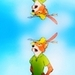 Robin ڈاکو, ہڈ