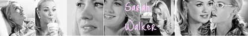 Sarah Lisa Walker photo called Sarah Walker Banners.