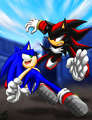 Sonic VS Shadow - shadow-the-hedgehog photo