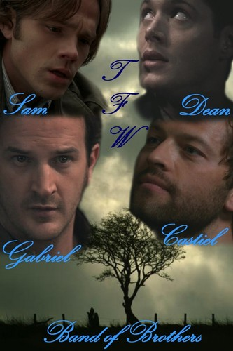 Team Free Will - Band of Brothers