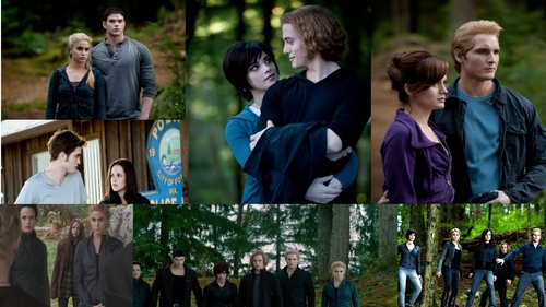 The Cullens Eclipse 壁纸