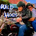 Wild Hogs - the-king-of-queens icon