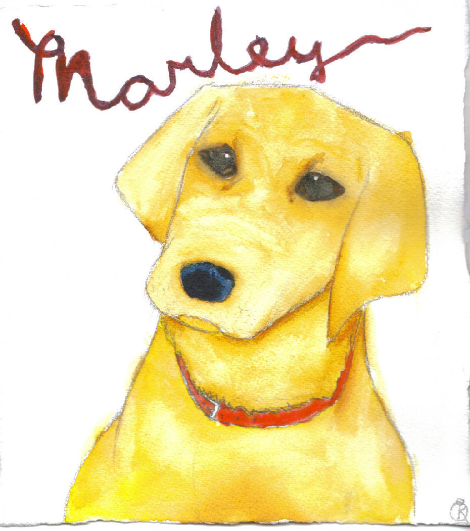 book report marley and me From publishers weekly labrador retrievers are generally considered even-tempered, calm and reliableand then there's marley, the subject of this delightful tribute to one lab who doesn't fit the mold.