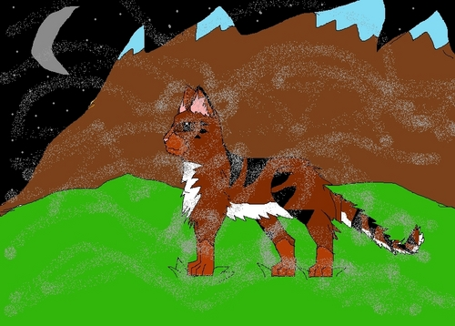 some cat i made on paint