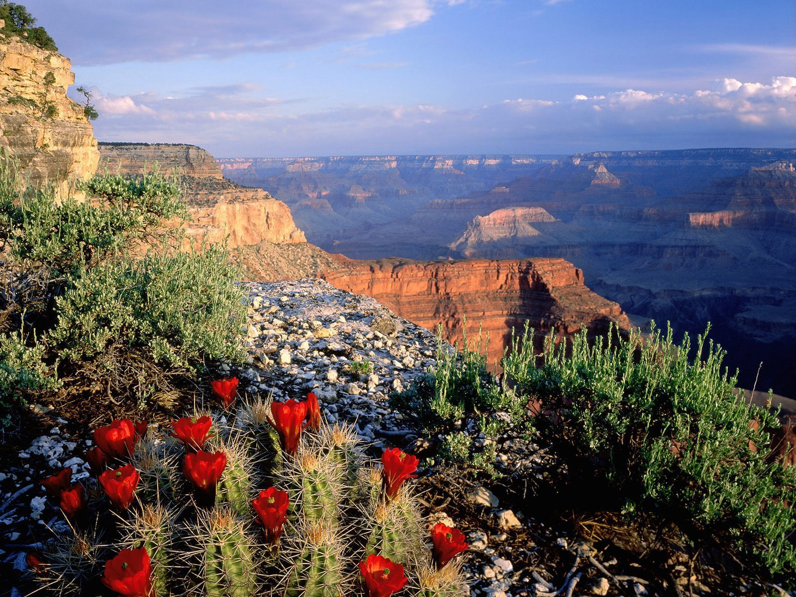 USA National Parks Images Usa National Parks HD Wallpaper And - National parks in usa