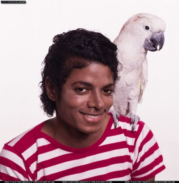 * AMAZING MICHAEL *