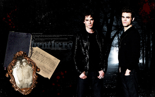 BROTHERS* - damon-and-stefan-salvatore Wallpaper