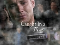 Caughtinfog - dean-winchester wallpaper