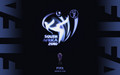 fifa-world-cup-south-africa-2010 - FIFA World Cup 2010 wallpaper
