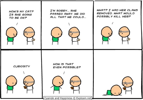 Cyanide and Happiness wallpaper entitled New comics
