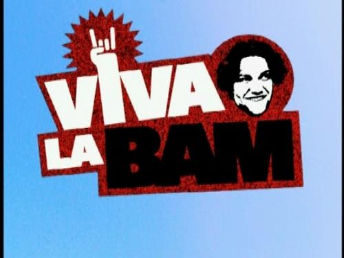Viva la bam images season 1 opening wallpaper and for Wallpaper viva home