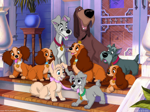 2 generations of Lady and the Tramp