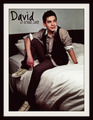 DAViD - david-archuleta fan art